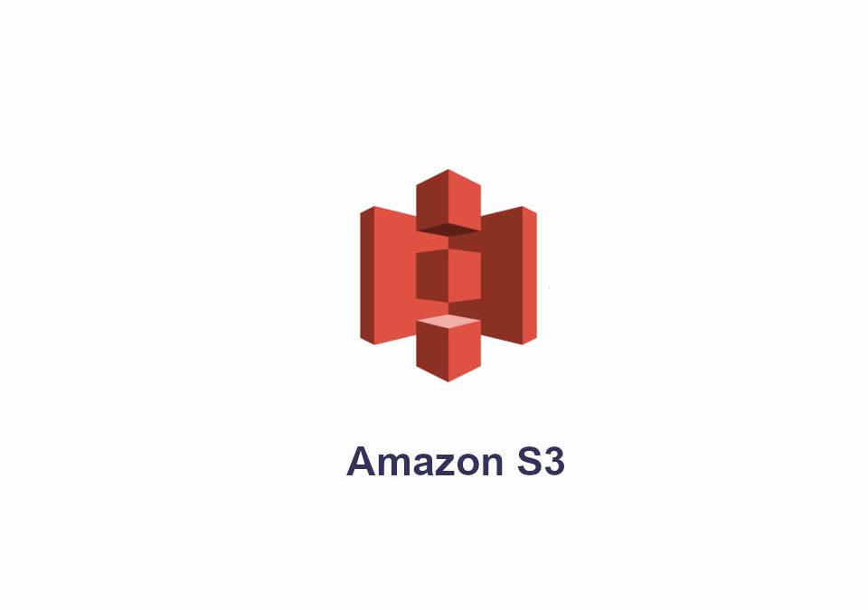 Amazon 3